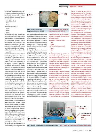 Ausgabe 4 (2008) Page 261