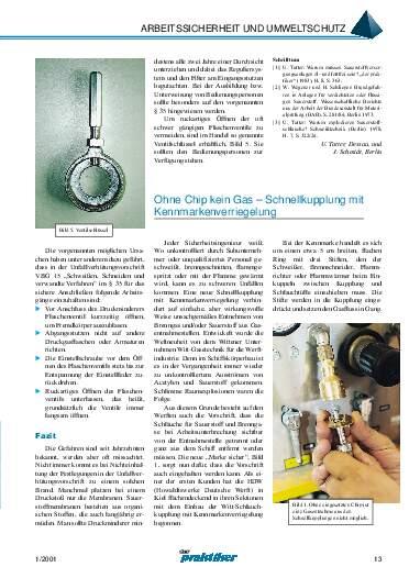 Ausgabe 1 (2001) Seite 13