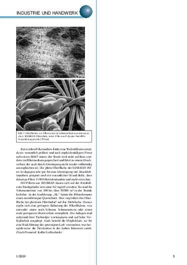 Ausgabe 1 (2001) Seite 5