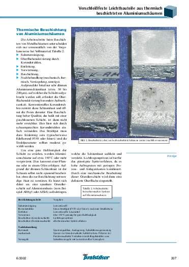 Ausgabe 6 (2002) Seite 207