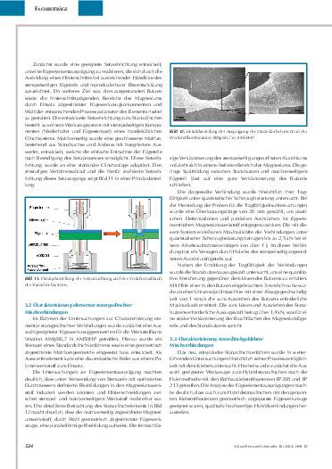 Ausgabe 10 (2004) Seite 524