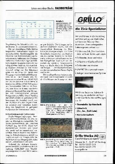 Ausgabe 4 (2000) Seite 231