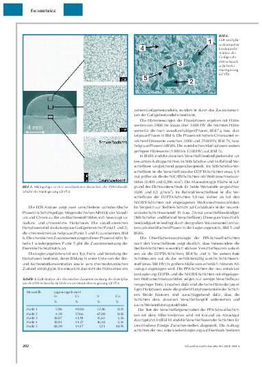 Ausgabe 4 (2008) Seite 202
