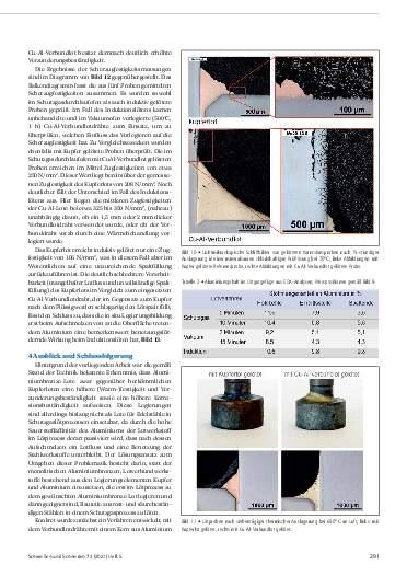 Ausgabe 5 (2021) Seite 291