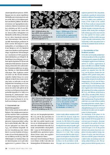 Ausgabe 1 (2008) Jahrgang 1 Seite 40