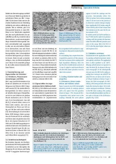 Ausgabe 1 (2008) Jahrgang 1 Seite 41