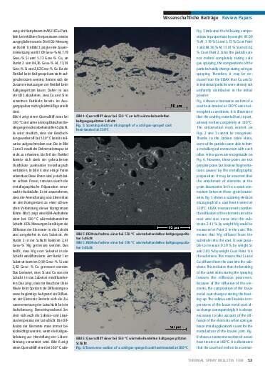 Ausgabe 1 (2008) Jahrgang 1 Seite 53