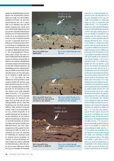 Ausgabe 1 (2009) Jahrgang 2 Seite 36
