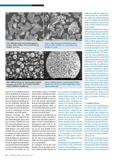 Ausgabe 1 (2009) Jahrgang 2 Seite 42