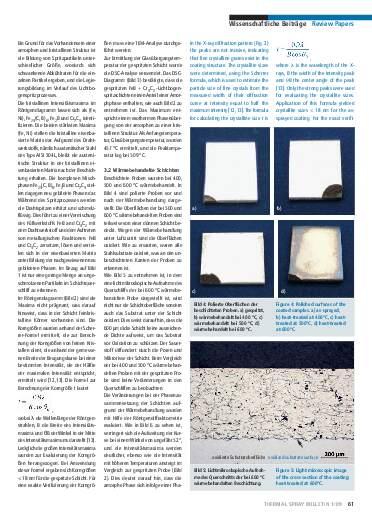Ausgabe 1 (2009) Jahrgang 2 Page 61