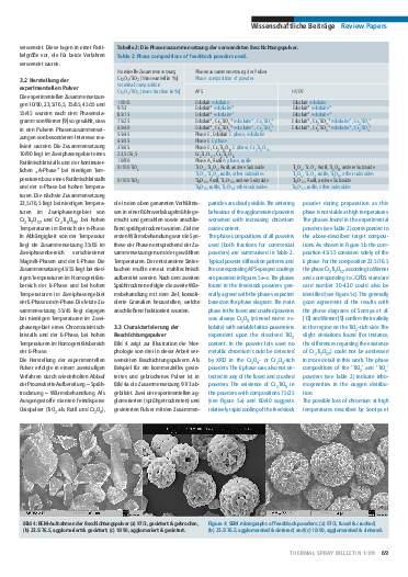 Ausgabe 1 (2009) Jahrgang 2 Page 69