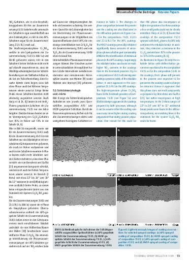 Ausgabe 1 (2009) Jahrgang 2 Seite 73
