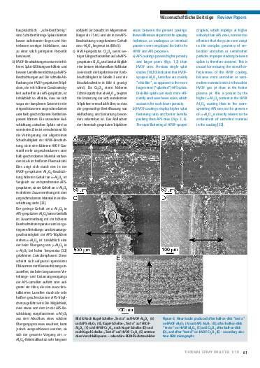 Ausgabe 1 (2010)  Jahrgang 3 Page 61