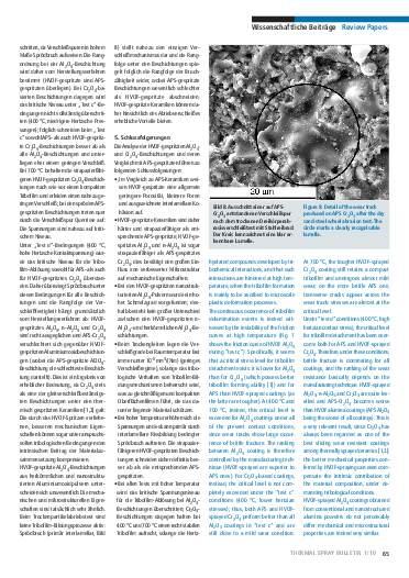 Ausgabe 1 (2010)  Jahrgang 3 Page 65