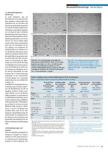 Ausgabe 1 (2010)  Jahrgang 3 Page 75