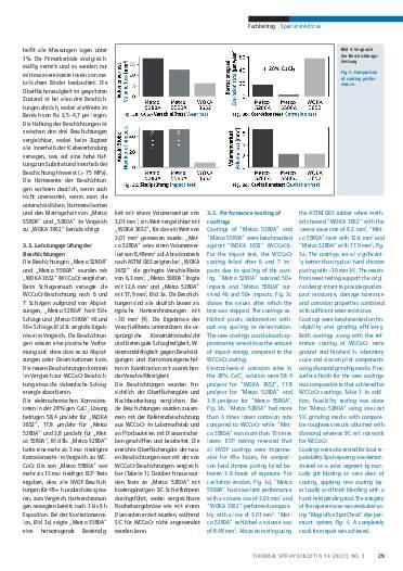 Ausgabe 01 (2021) Jahrgang  14 Seite 29