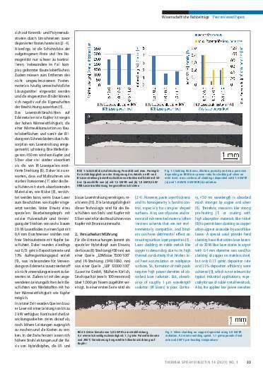 Ausgabe 01 (2021) Jahrgang  14 Seite 33