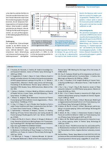 Ausgabe 01 (2021) Jahrgang  14 Page 45