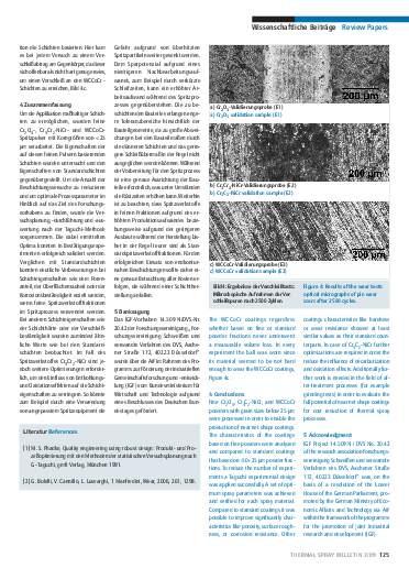 Ausgabe 2 (2009) Jahrgang 2 Seite 125