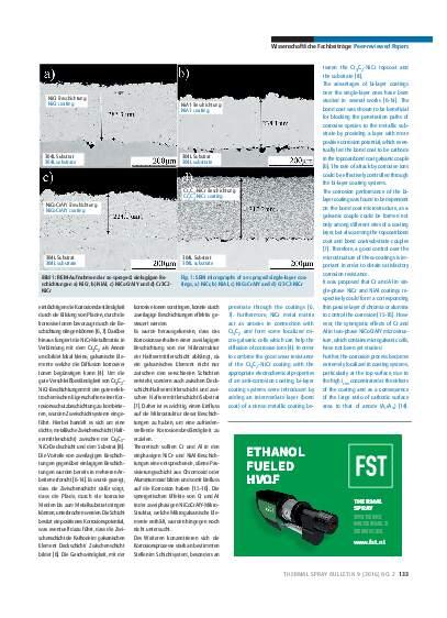 Ausgabe 02 (2016) Jahrgang 9 Seite 133