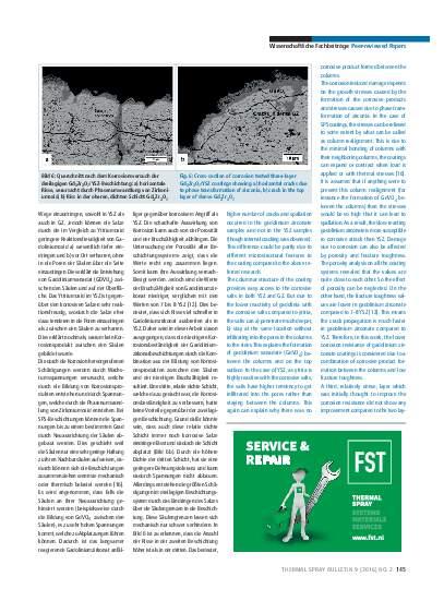 Ausgabe 02 (2016) Jahrgang 9 Seite 145