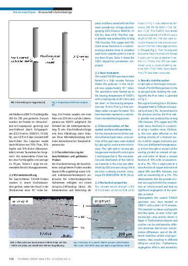 Ausgabe 02 (2020) Jahrgang 12 Seite 110