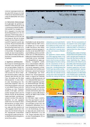 Ausgabe 02 (2020) Jahrgang 12 Seite 111