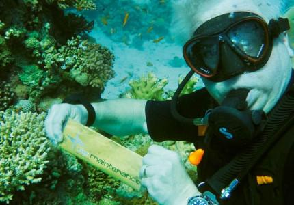 Arbeiten unter Extrembedingungen: Unterwasserschweißen und -schneiden mit umhüllten Stabelektroden für Schiffbau- und Offshore-Anwendungen, Teil 1