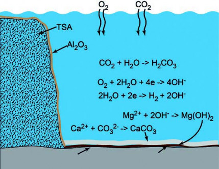 Corrosion Performance of Damaged Thermally Sprayed Aluminium in Synthetic Seawater at Different Temperatures